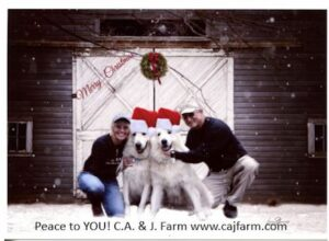 Christmas CA&J Farm