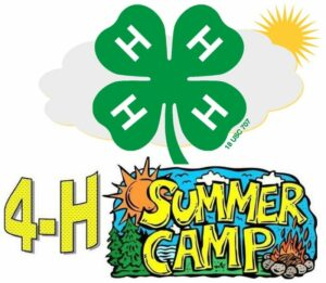 4-h summer camp 2018 Mathews