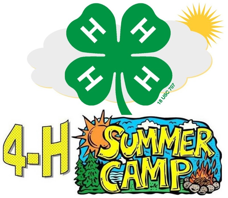 Image result for 4-H Camp Graphic