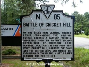 Crickets on a Hill